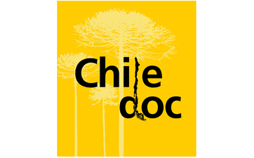 Chile Doc logo with the light-yellow silhouette of three tall trees with thin trunks and large canopies against a square yellow background. In the middle, Chile Doc is written in black in two offset lines; a vertical tree branch forms the letter L and part of the letter D.